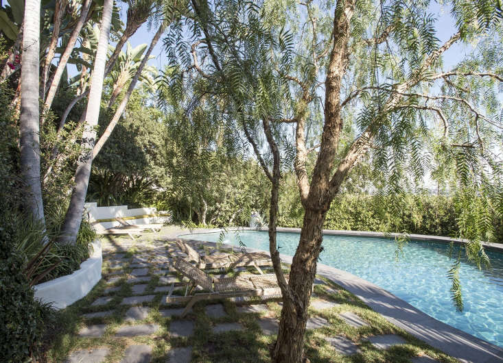 Garden designer Matthew Brown judiciously pruned mature California pepper trees (Schinus molle) to create an airy canopy around a new swimming pool in Los Angeles.