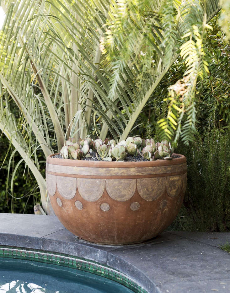 Succulents are a good design choice; they stay green year-round and won&#8