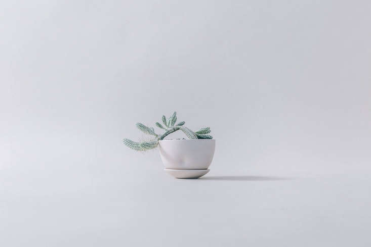 The stoneware Hips collection is handmade byRhode Island-based, Japan-trained ceramist Kelli Rae Adams. The collection was inspired by dance—the clay is even repurposed from a performance piece that Adams created with a choreographer and dance ensemble.