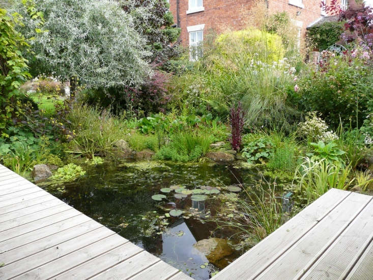 Bev Horsley entered An Artist's Farmhouse Country Garden in Shrewsbury, England, chosen as a finalist by Rita Konig, who said: &#8