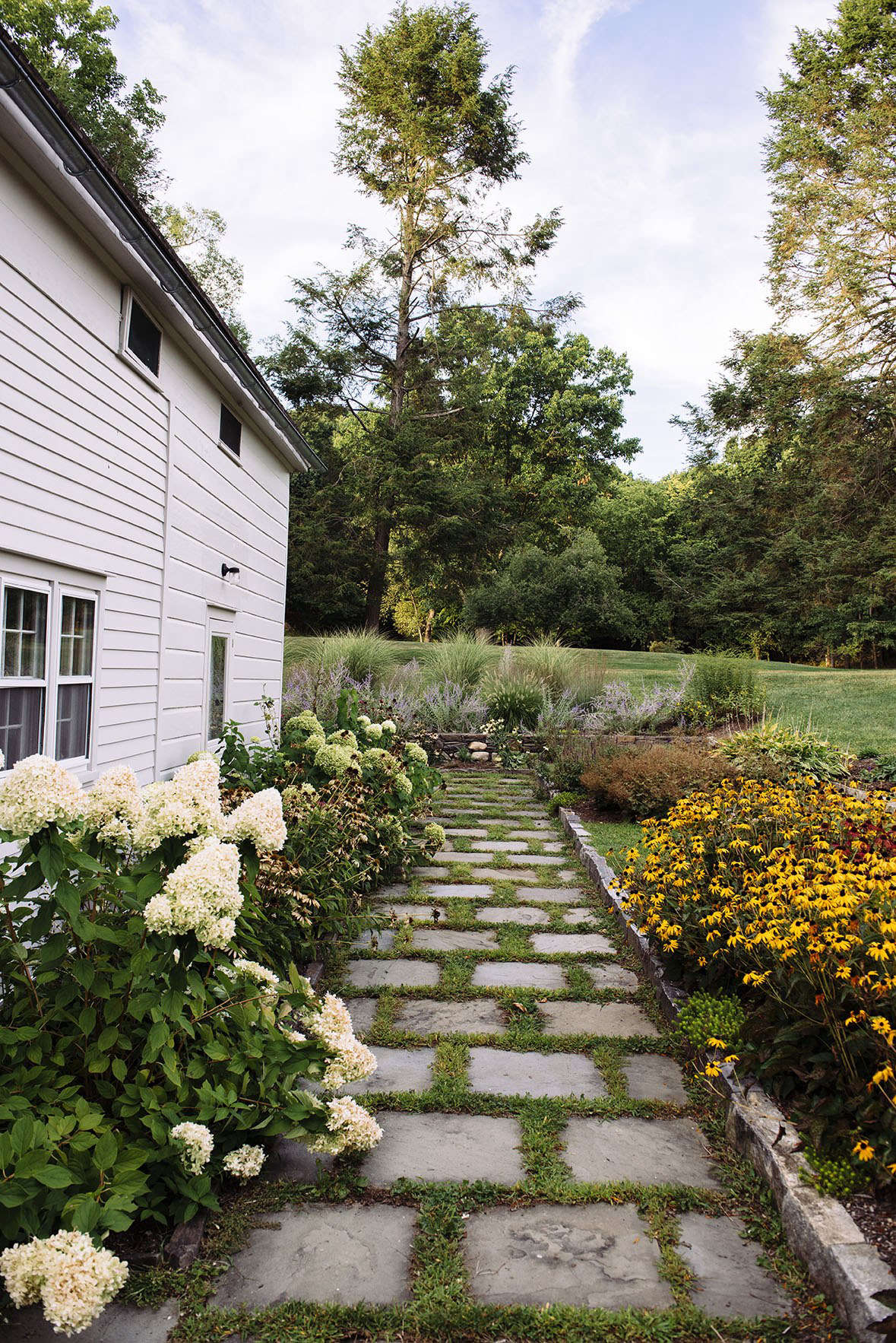 Hydrangeas (L) and yellow Rudbeckia (R) that echoes the vibrancy of the yellow front door edge a path of stone pavers.
