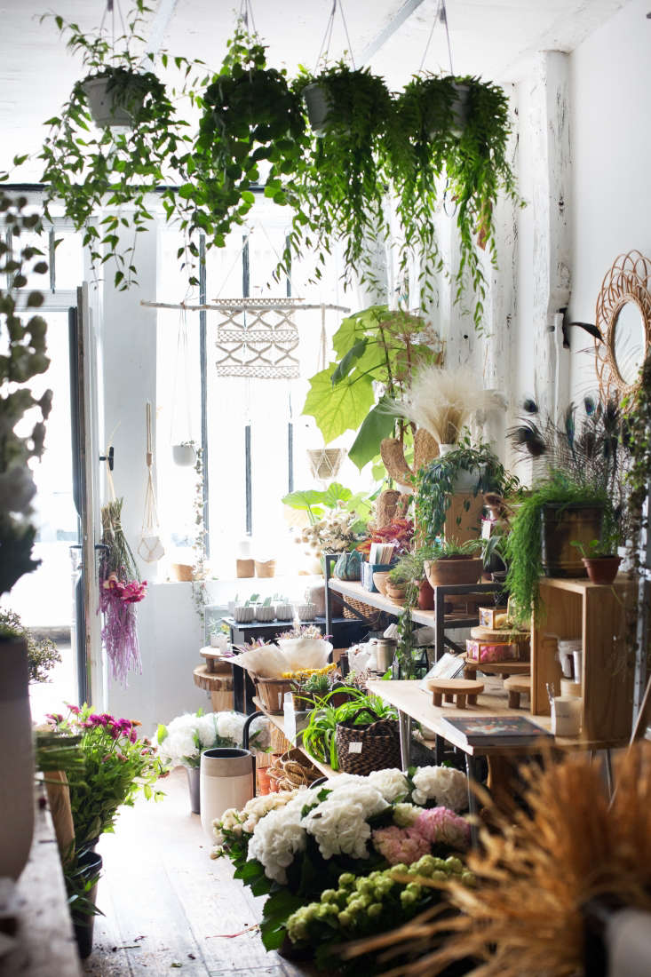 Vial sells pots and planters as well as houseplants in her shop.