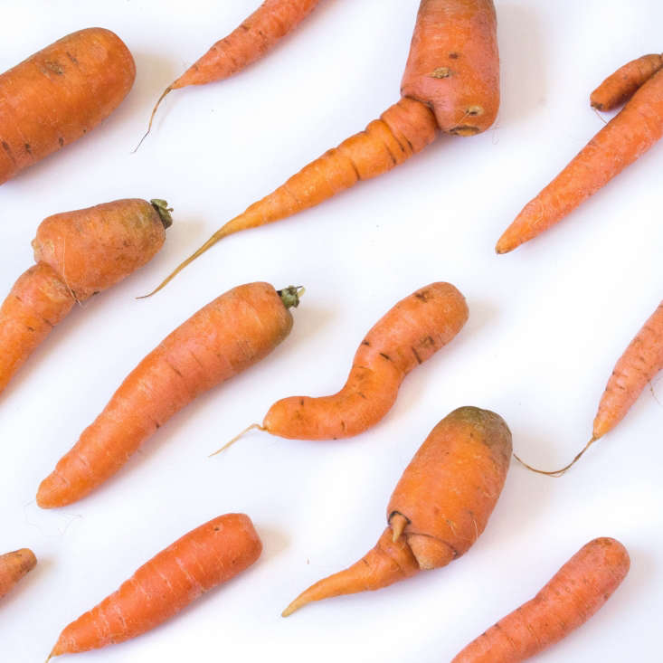 Cosmetically challenged carrots.