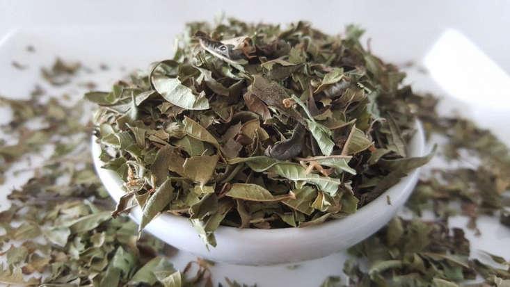 dried lemon verbena leaves by Tea Life.