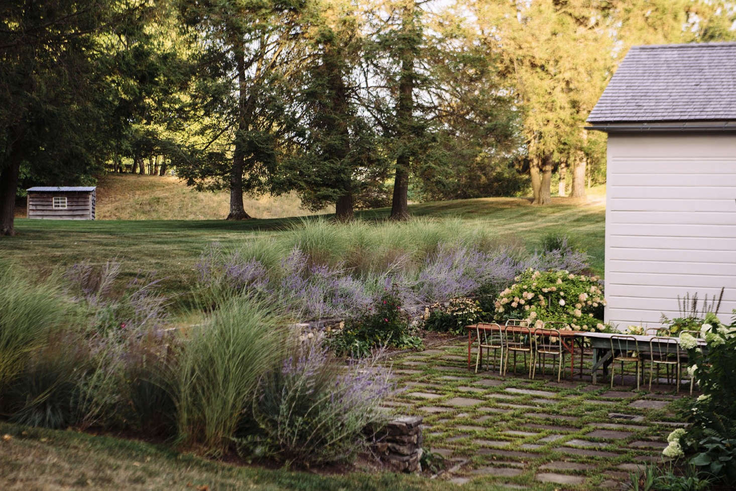 "A row of perennial little bluestem grass serves as a backdrop to flowering purple Russian sage at The ""Anti-Trophy"" Landscape: A Charming Country Garden in Columbia County, NY. Photograph by Rush Jagoe, courtesy of Berman Horn Studio."