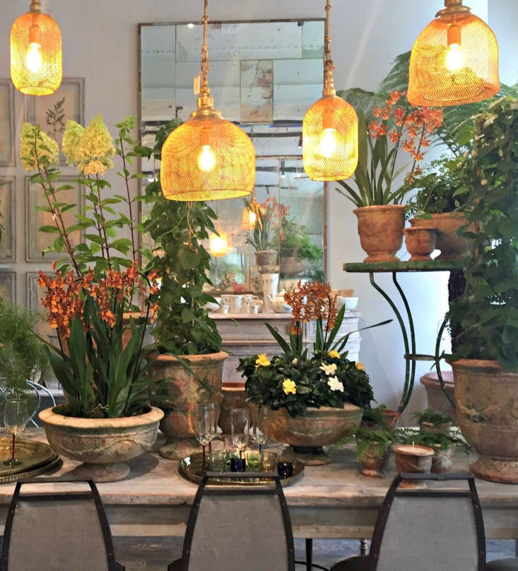 Here tables are laden with mossy terra cotta planters including the Ampholia Poterie Anduze vases with floral garlands (the medium size is £5). The metal mesh lampshades give the space a warm glow (from £5). Photograph by Clare Coulson.