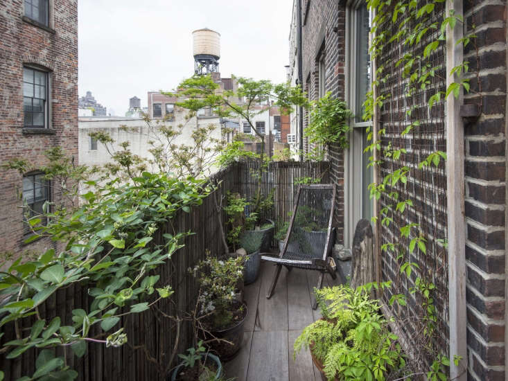 For a Soho fire escape garden, Brook created a sense of seclusion in the middle of the city by planting fast-growing vines.