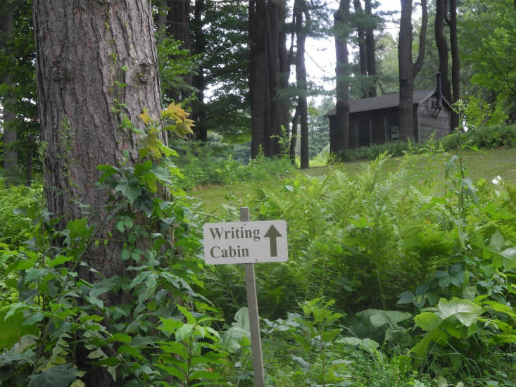 The stand of white pine which Millay planted as seedlings around her writing cabin reminded her of her childhood in Maine and were given to her by her mother.