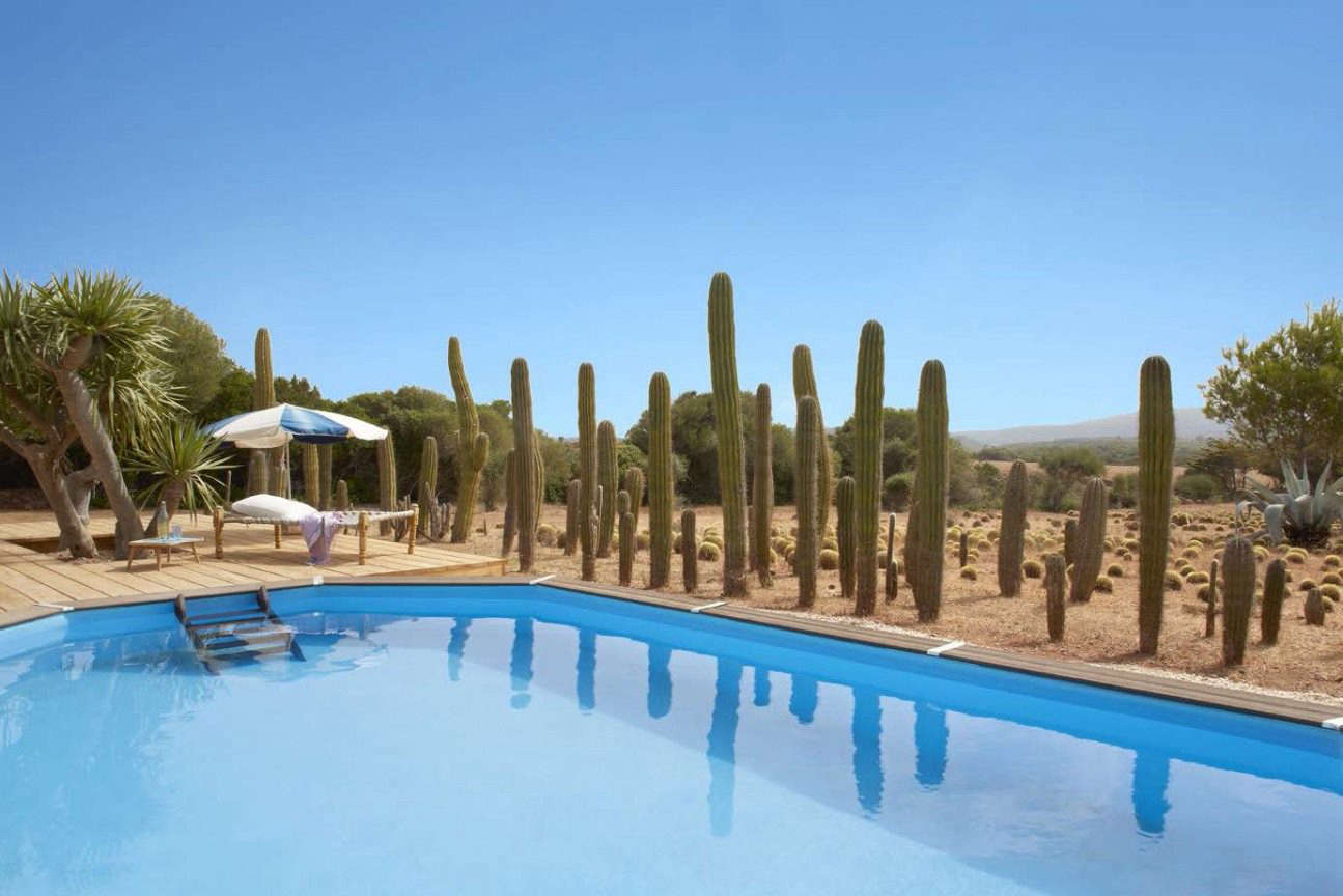 Quintana Partners installed a swimming pool at the bottom of a field and edged one side with a cactus border.
