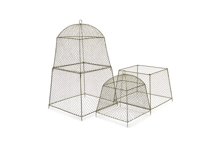 Adjustable dome-shaped rabbit proof cloches can be customized withRabbit Proof Cloche ExtensionS (from £8.0\2 to £\25.49 depending on size at Crocus) to protect larger plants and shrubs.