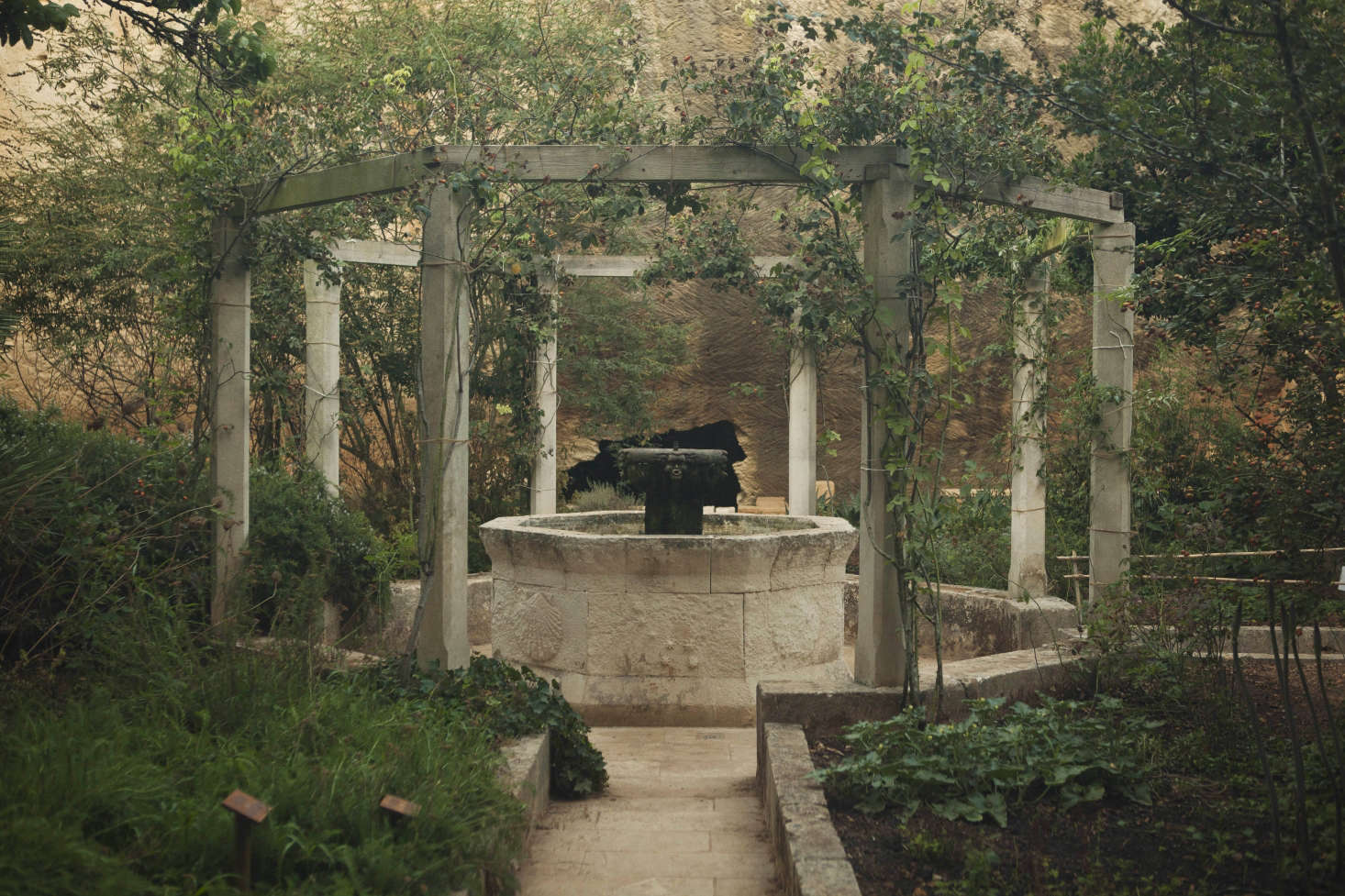The Medieval Garden, a sanctuary for roses and richer planting.