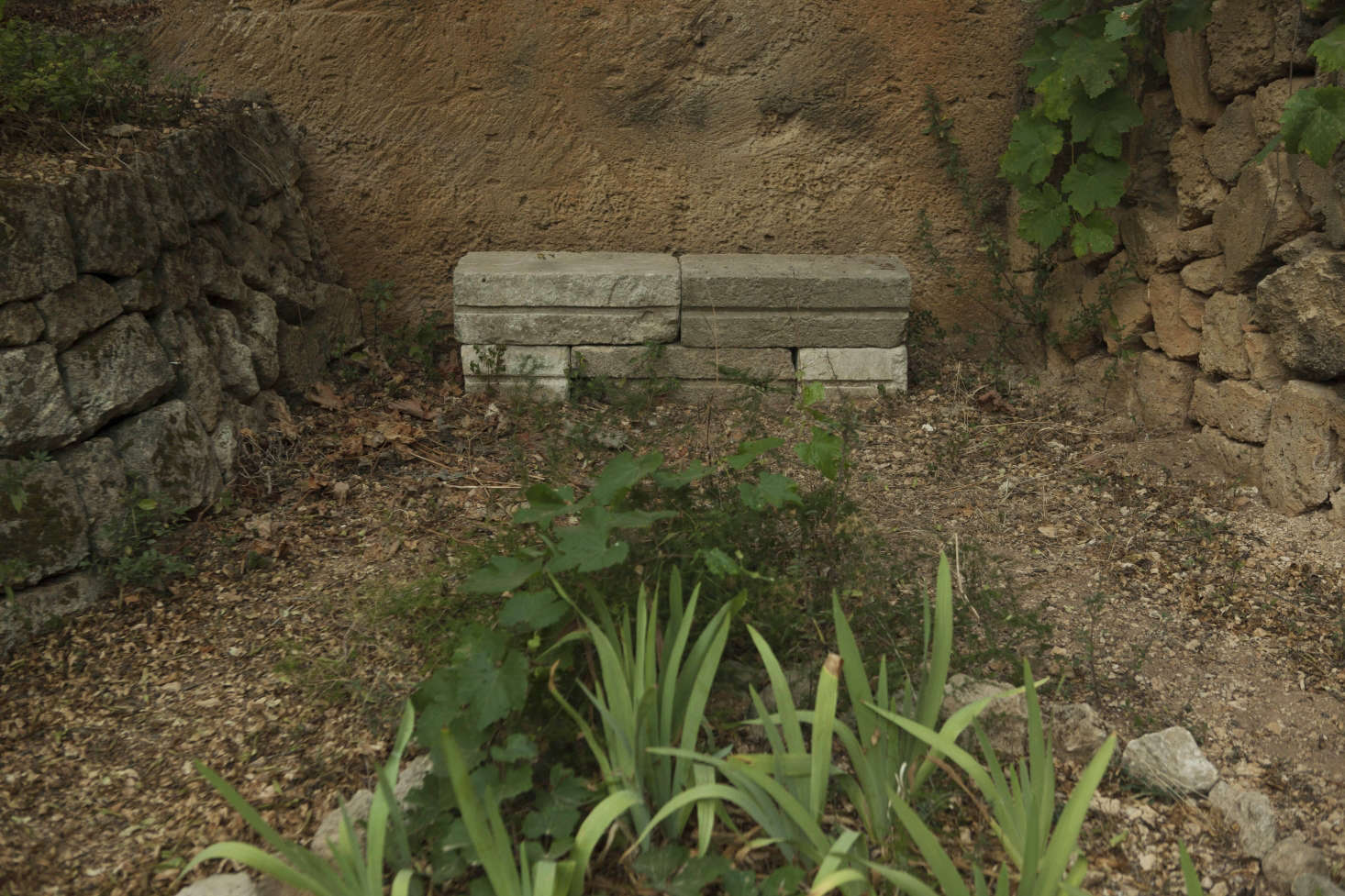 With raw materials like these, the hardscaping becomes the garden. Nonetheless, vines and irises thrive in the dry bed marked out by rough stones.