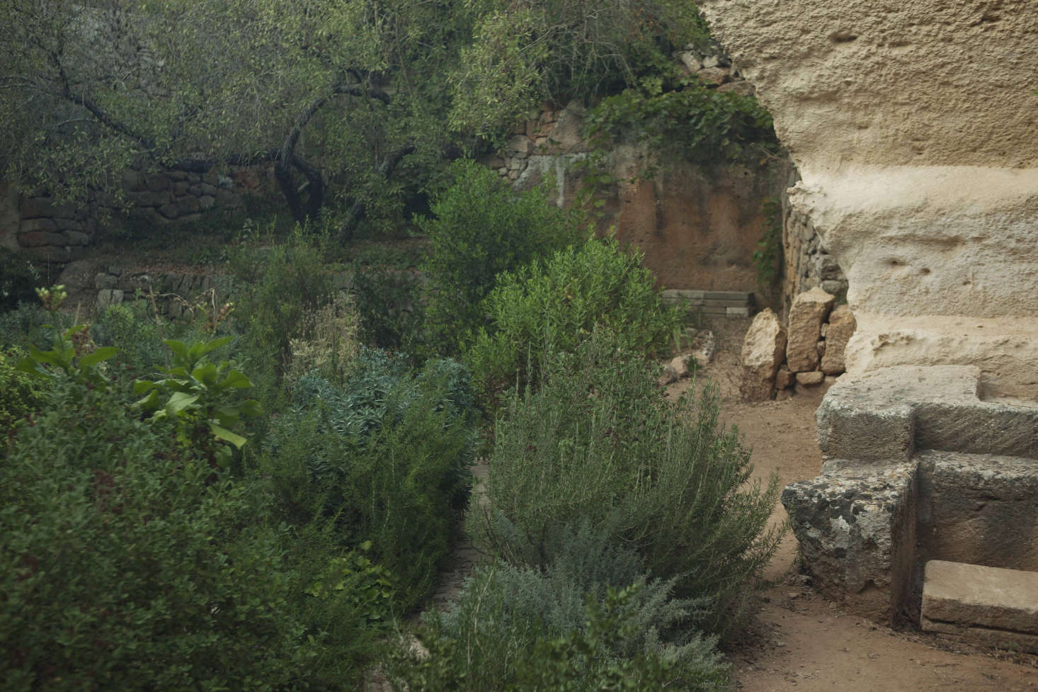 Lithica, a quarry garden in the Balearic Islands
