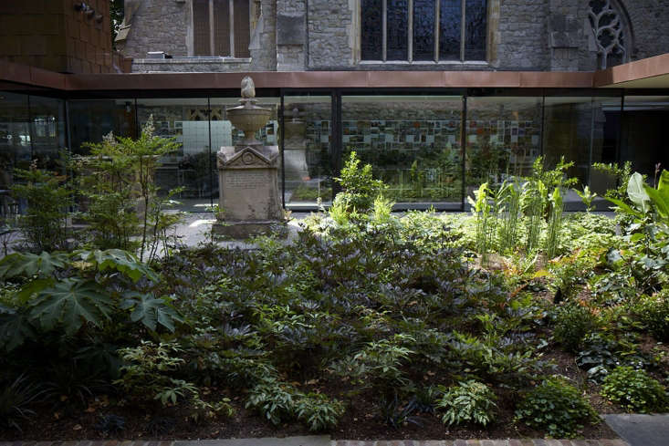 A view across the cloistered garden, with rare specimens mingling with finer varieties of popular garden plants.