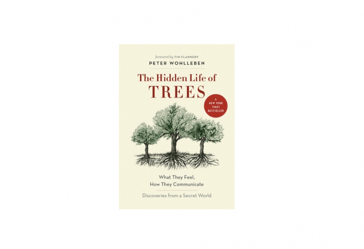 The Hidden Life of Trees is available for $.96 in hardcover from Amazon.