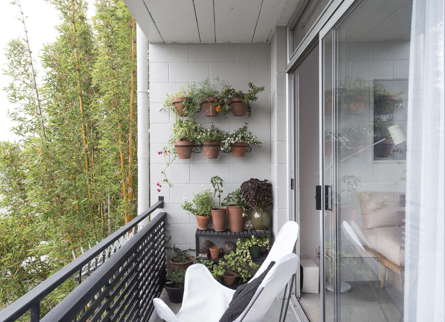 Steal This Look: Balcony Garden on a Budget - Gardenista