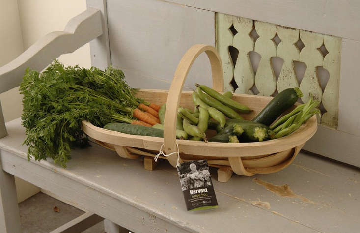 Burgon & Ball&#8\2\17;s large Traditional Wooden Trug with solid brass pins and screws is £3\2.99 (\$44 USD).