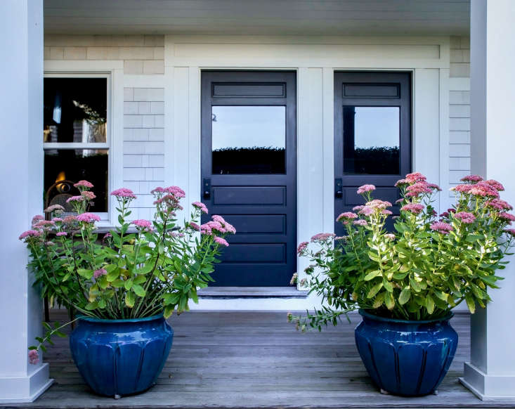 Sedum &#8\2\16;Autumn Joy&#8\2\17; thrives in these glazed ceramic planters at a guest house in Cape Cod. Photograph by Justine Hand for Gardenista, fromBefore & After: A New Cape Cod Garden for the Old Homestead in Provincetown.