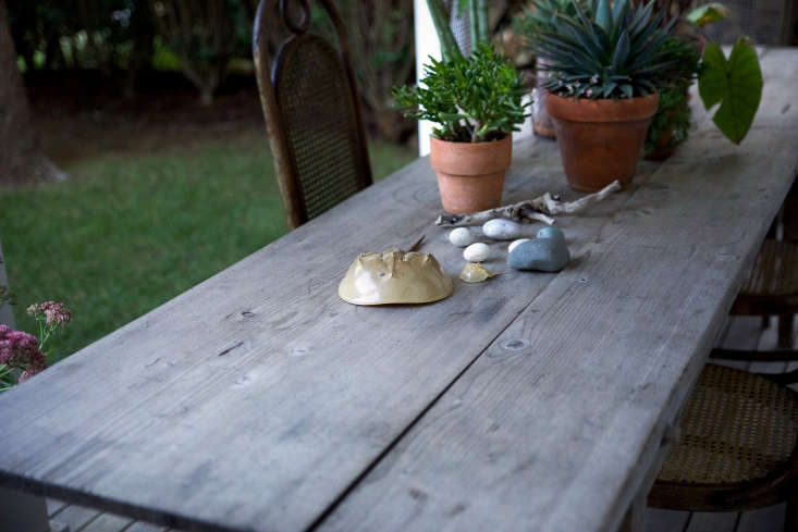 Tabletop decor includes a collection of succulents and beach finds.
