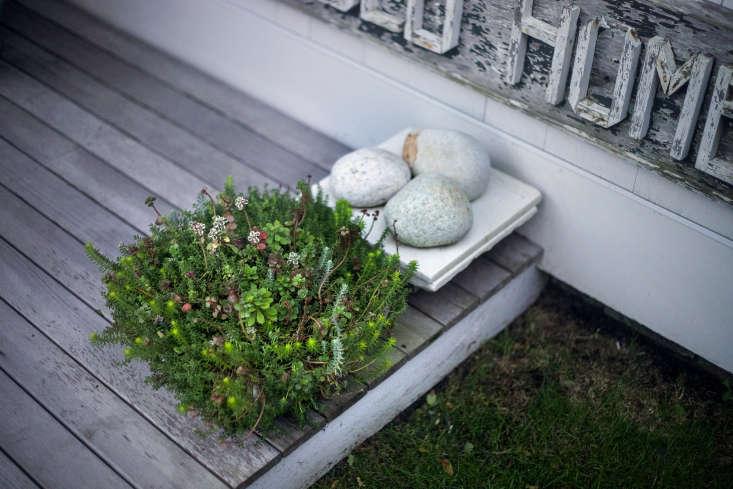 Sculptural details on the porch: a mini succulent garden plus a trio of beach stones.
