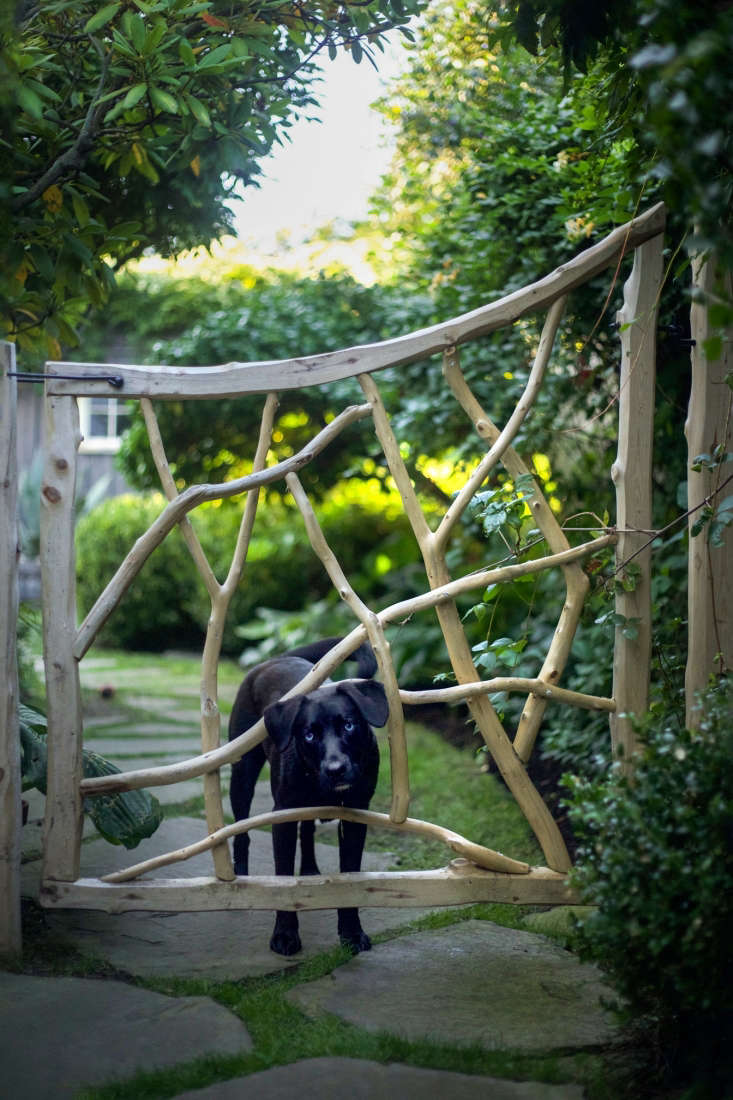 Along the side path leading from the front yard, a stripped cedar gate—designed by Philip and built by Frank Hamm—keeps Sam safely in the back garden.