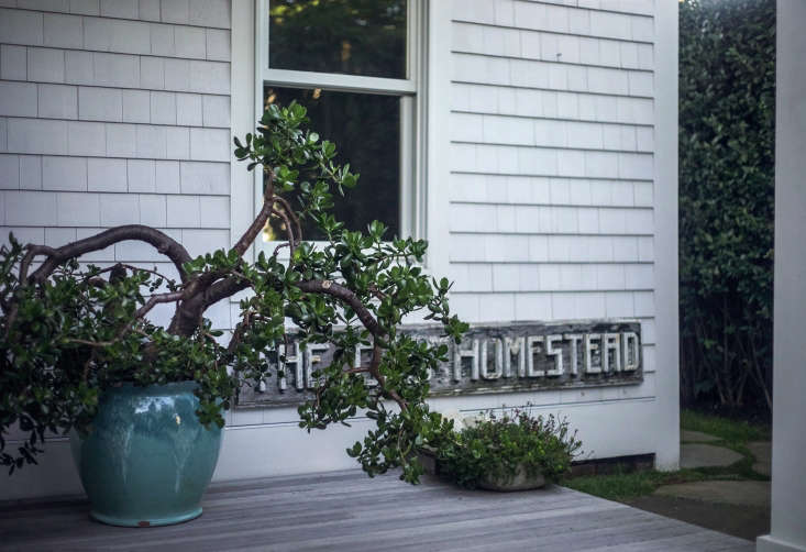 Recently reunited: after some clients bought Philip&#8\2\17;s Uncle Ciro&#8\2\17;s house down the street, they gave him his grandmother&#8\2\17;s jade plant, which she had brought to the house from New York. The Old Homestead sign is from the original guest house.