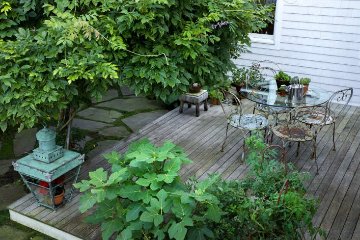 Whereas the front yard is restrained, the backyard is wild and organic, with untamed plantings and cascading vines. A canopy of wisteria (the vines belong to two different varieties, which flower a different times) shades a wooden deck.