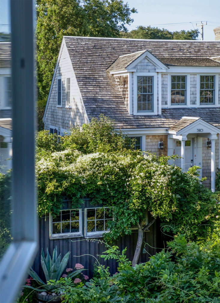 The view from the upstairs guest house window looks down onto a shed, which is clad in wisteria and clematis. &#8\2\20;We intentionally let all the climbing plants and surrounds to be overgrown and lush,&#8\2\2\1; they say.