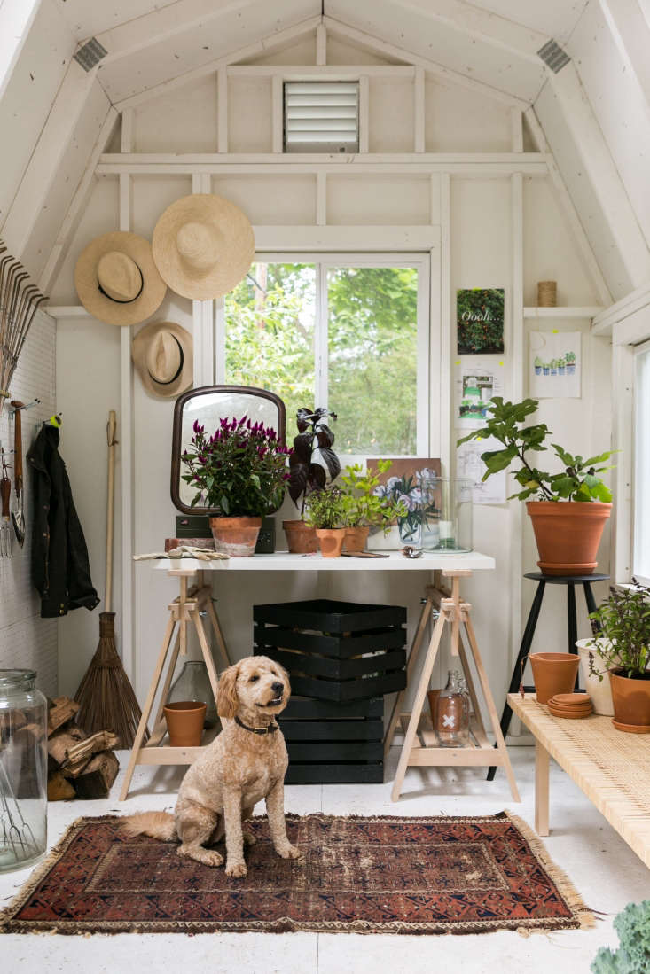 In the shed, Adams created a command center with Ikea&#8\2\17;s Linnmon tabletop and Finnvard trestles. A tall black Walnut Stool made by Sawkille Co. does double duty as a planter.