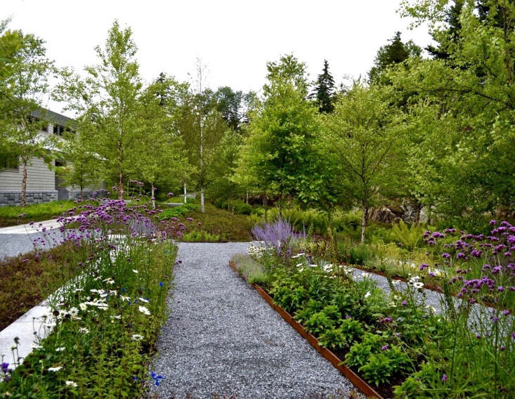 An homage to the designs of \20th-century landscape architect Beatrix Ferrand, an edible garden has gravel paths to separate linear beds and includes ornamentals such as verbena and dwarf Russian sage.