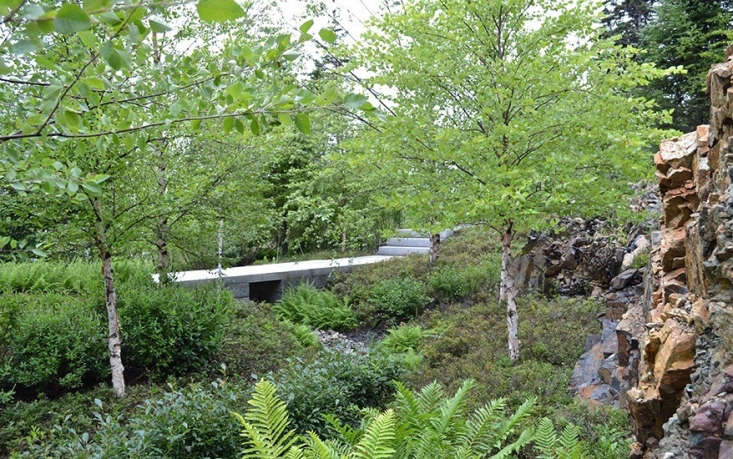 A granite footbridge crosses a swale garden planted with ferns, winterberry, and inkberry to control runoff.