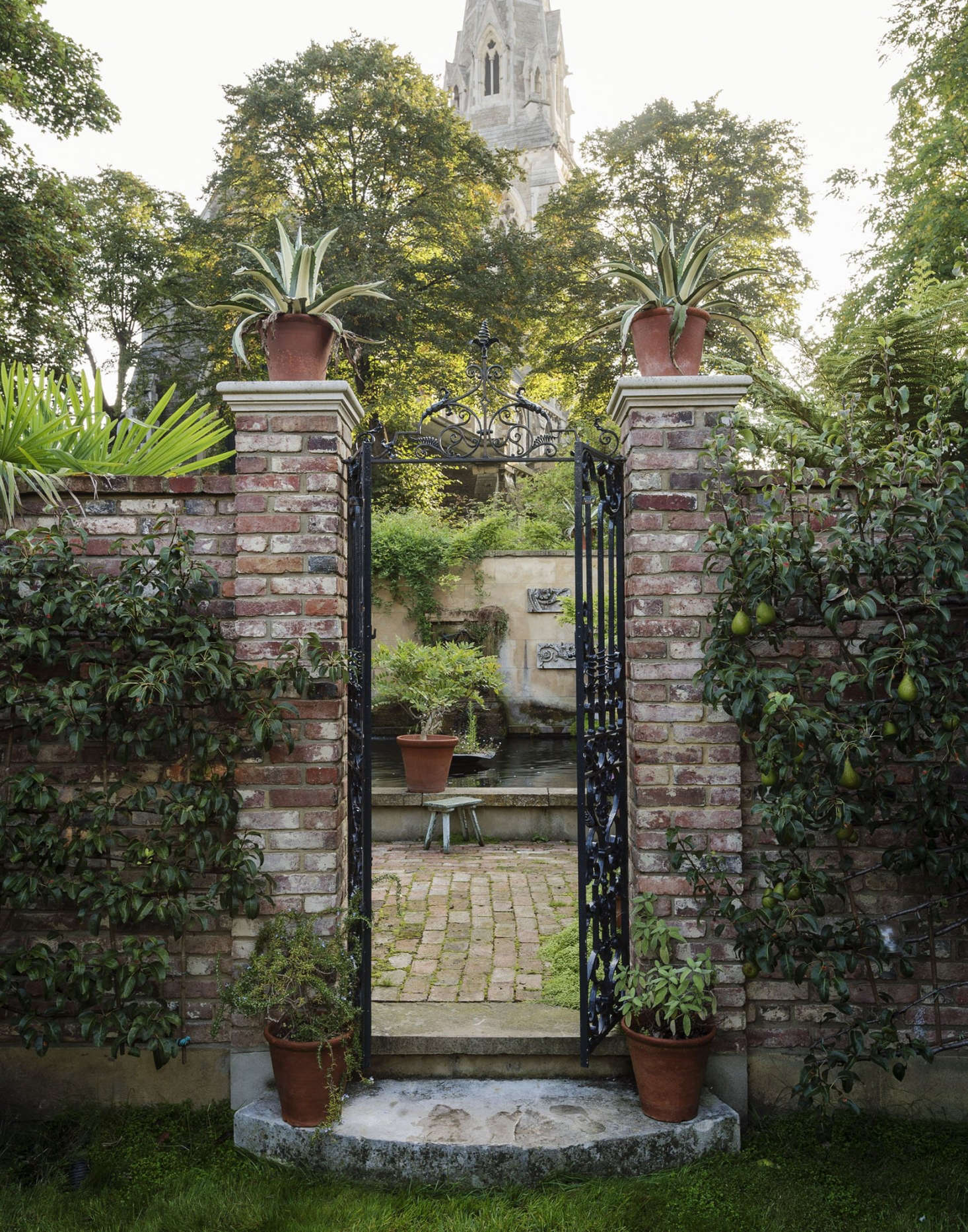 Photograph by Matthew Williams for Gardenista. See more of this garden in our Gardenista book.