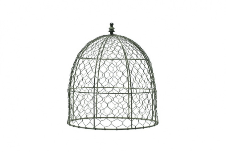 With a turned finial for a handle, a \14.5 In. Wire Cloche is \$39 from Home Depot.