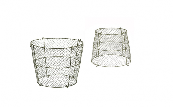 A basket-shapedReversible Boma Plant Support can be flipped over to use as a cloche; it is £34.99 from Crocus.