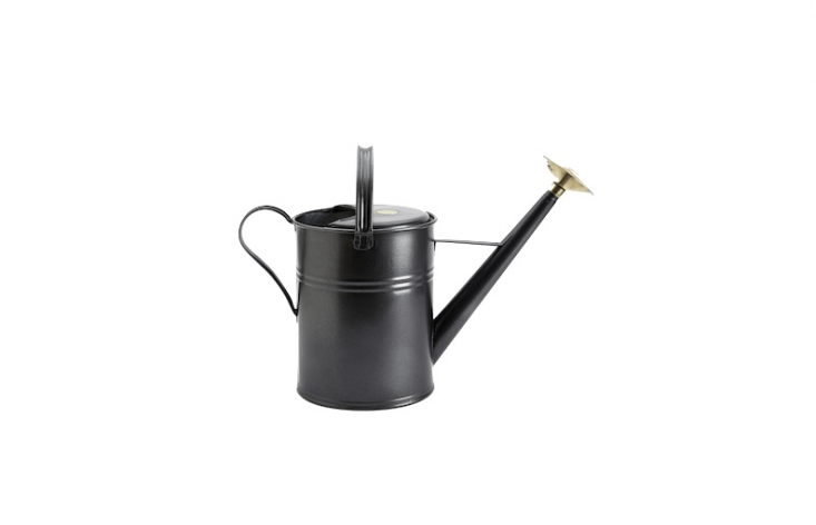 A rust-resistant, hot-dipped galvanizedHaws Traditional Metal Watering Can with a 8.8-liter capacity is £47 from Wood and Meadow.