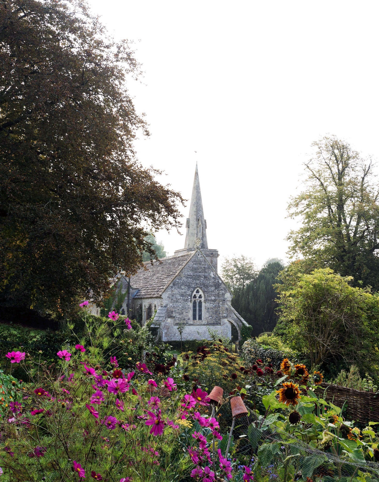 A next-door church spire provides a dramatic backdrop to the flower beds in Pentreath and McCormick&#8