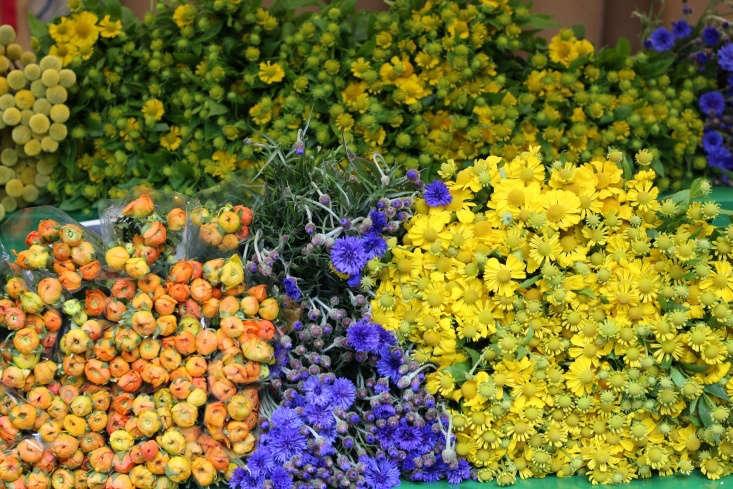 Ranunuculus, cornflowers, and Heleniums.