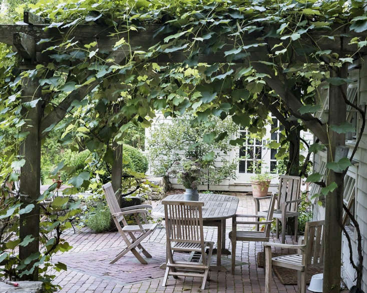 A sturdy pergola supports the grapevines.