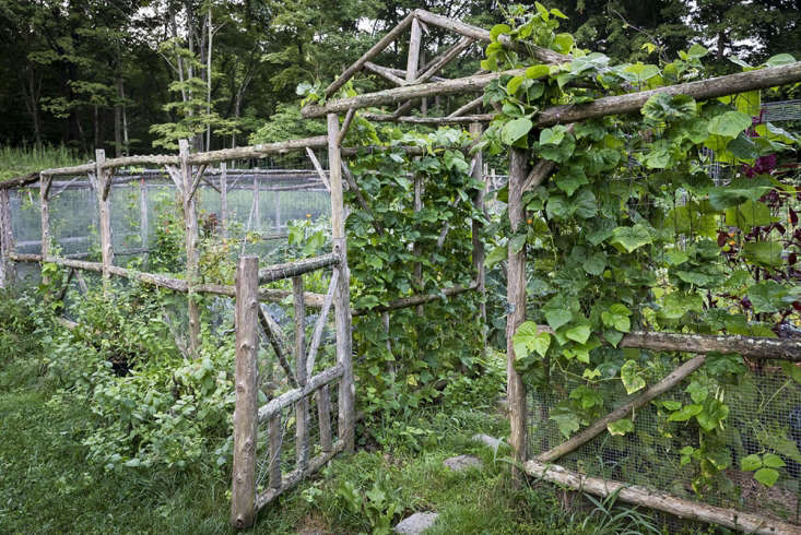 The kitchen garden, fenced against deer if not chipmunks.