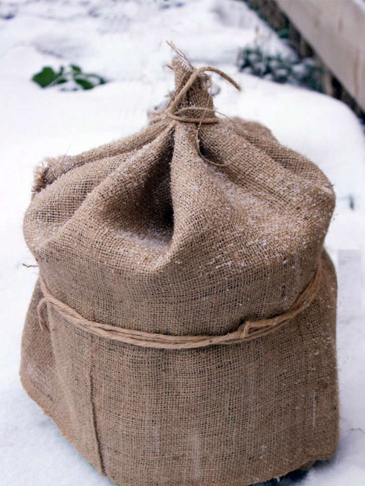 A \1\2-foot-longBurlap Plant Coverwith a width of 40 inches is \$\1\1.99 from Clever Brand via Etsy.