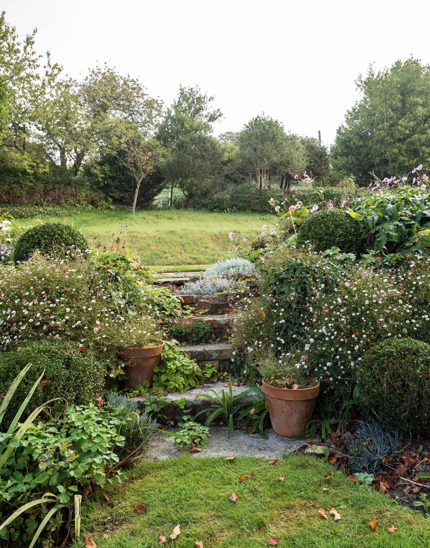 10 Landscape Design Tips You Need To Know To Get Started Gardenista