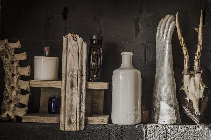 """On the Scottish Highlands, &#8\2\20;nearby beaches are a place to find crazy bits and pieces, including bones,"""" says creative director Justin Hooper; he thinks the vertebrae he displays on a kitchen shelf came from a sheep. See more in our Kitchen of the Week post."""