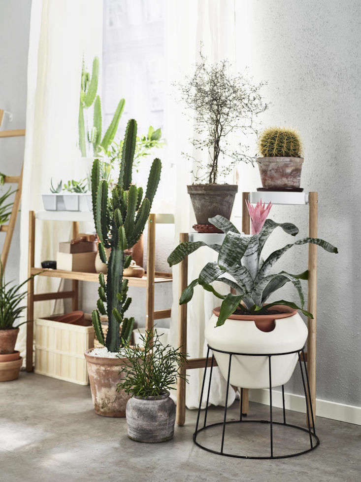 Ikea sells a selection of self-watering plant pots, including white troughSötcitron ($src=