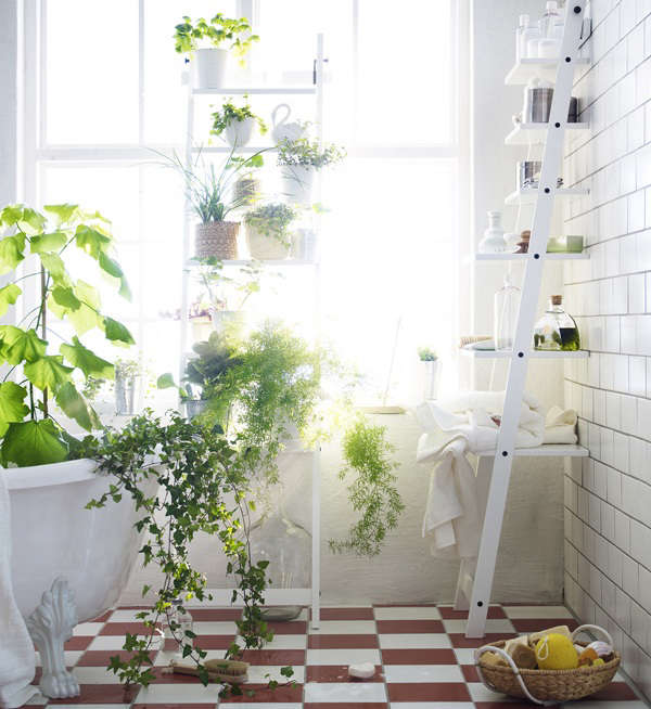 See more at New From Ikea: A Stepladder Shelf for Plants.