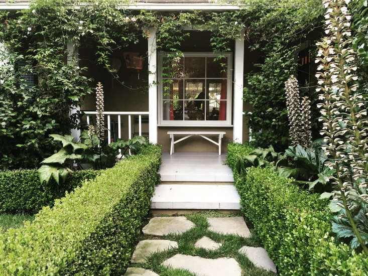 """What I love about this garden, by Ruth Black of RTR Design Build, is the gorgeous trumpet vines that are both lush and low-water,"" says Lauri. ""Those striking acanthus plants along the path are also drought-tolerant and beautiful."""