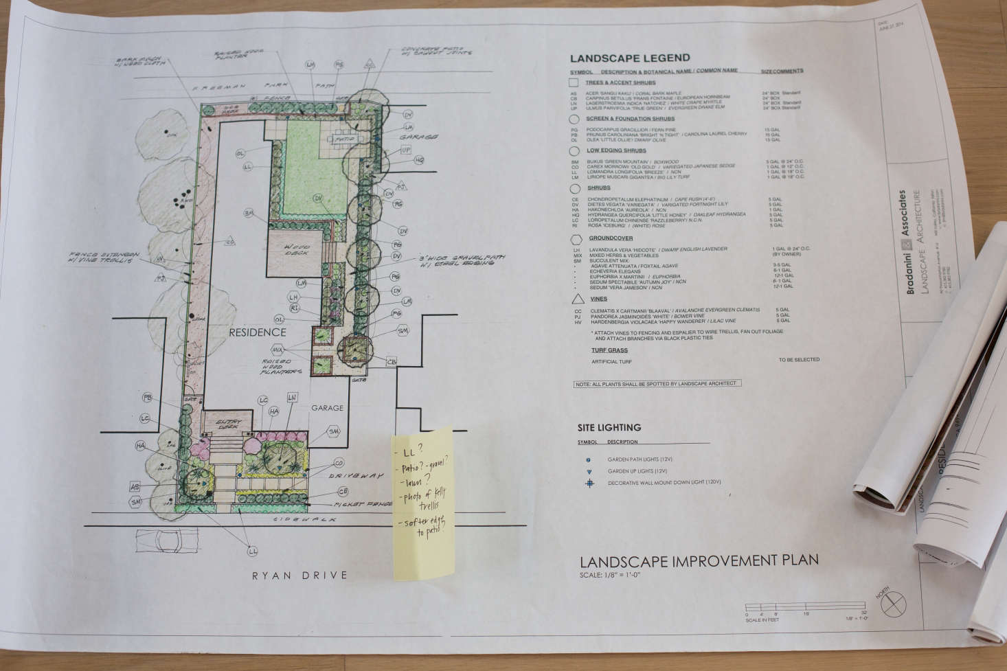Landscape architects Bradanini Associates designed a low-maintenance garden to provide year-round interest.