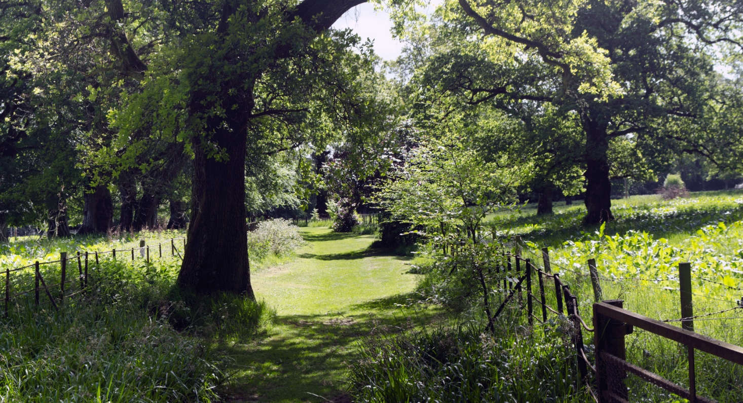 Grounds at The Burn House. Photograph by Stu Smith via Flickr.