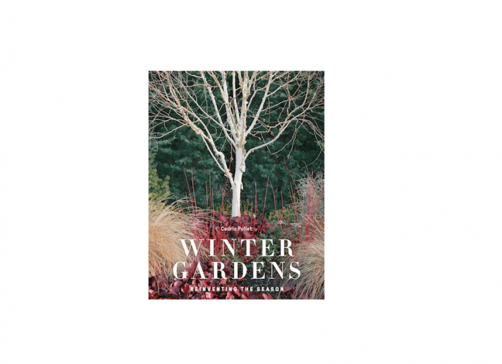 Winter Gardens : Reinventing the Season is £30, from Frances Lincoln.