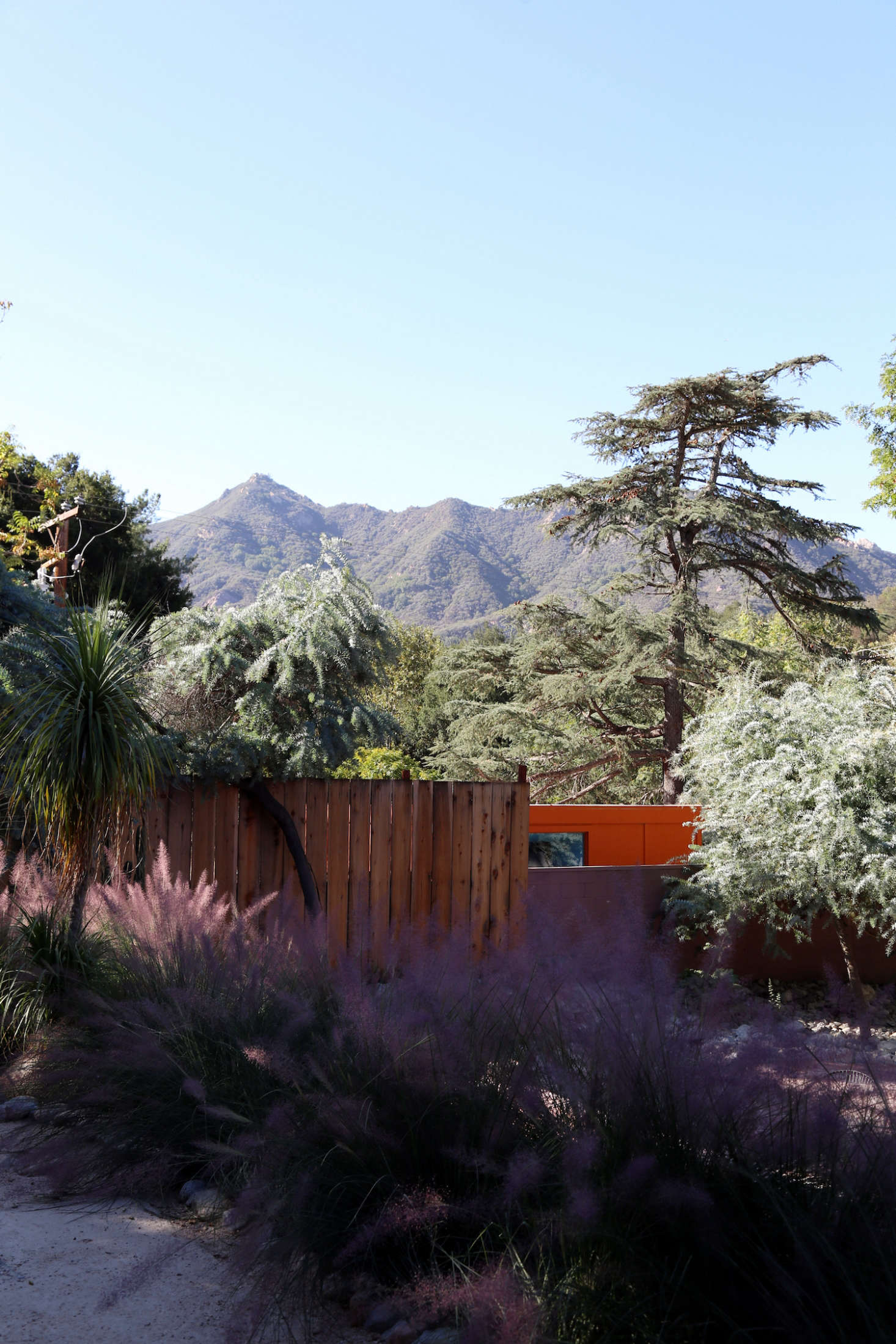 The center of the garden offers a prime view of the Santa Monica Mountains. The fence is made of rough-sawn redwood from Topanga Lumber.