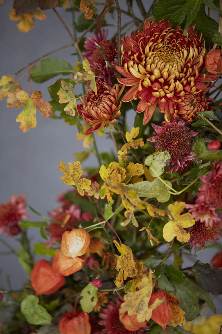 Hedgerow gatherings, including spindle and hawthorn, joined by magenta chrysanthemums and Chinese lanterns.